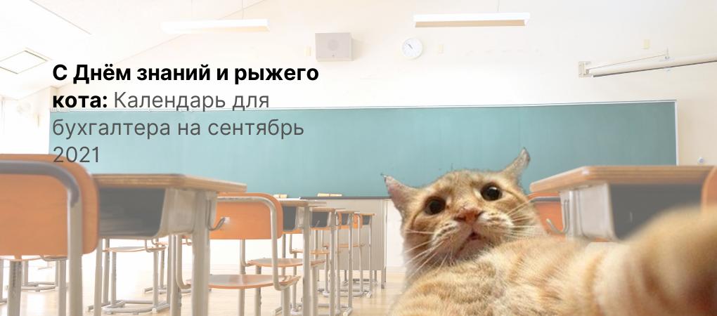 1 сентября – День рыжего кота. Календарь для бухгалтера на сентябрь 2021!